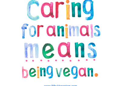 Posters about Veganism
