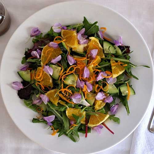 Spring Salad: Edible Flowers & Dandelion Greens