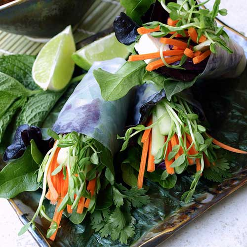 Summer Rolls + Two Dipping Sauces