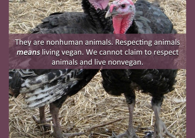 they are nonhuman animals